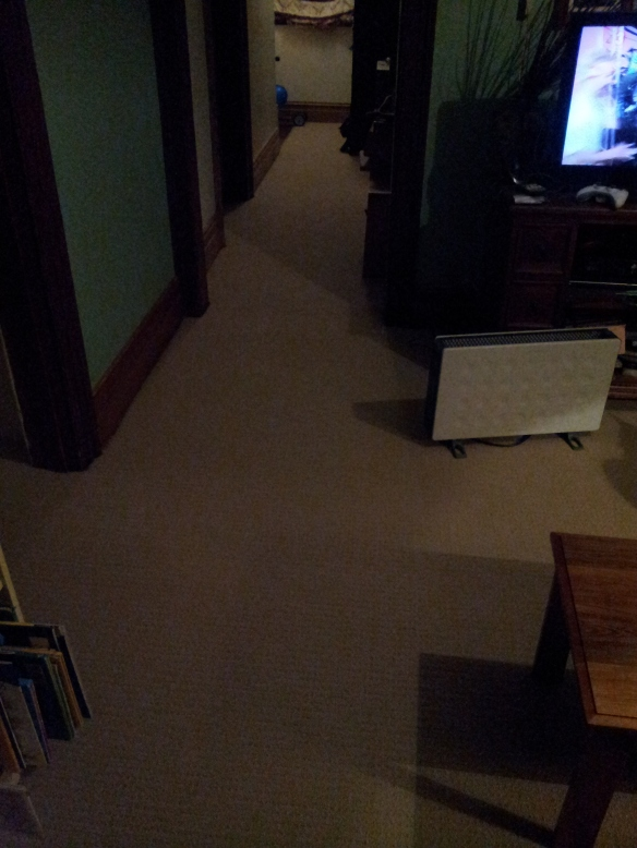 Lounge room carpet, but the lighting isn't that great. Just ignore the walls.